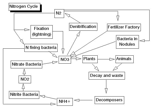 fixing the global nitrogen problem Nitrogen fixation is a process by which nitrogen in the earth's atmosphere is converted into  many nitrogen-fixing organisms exist only in anaerobic conditions,.